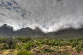 Le Cap, Afrique du Sud.