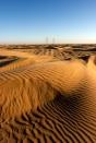Désert du Namib, Namibie.