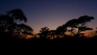 Kalahari, Botswana.